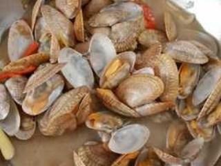 Kerang Batik Garlic
